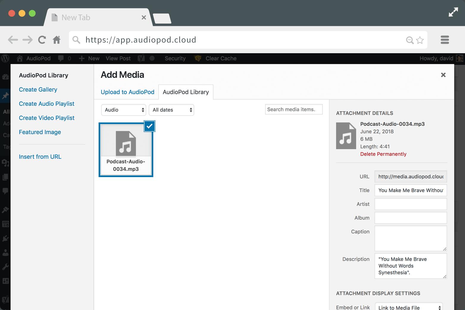 AudioPod-screenshot-ML